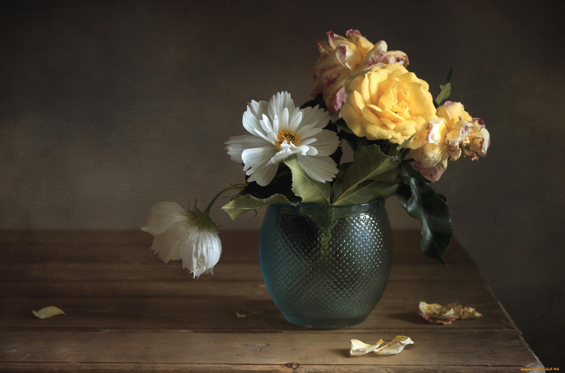фотонатюрморты цветы для фотопечати продавцы катались как